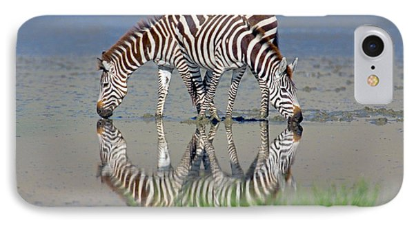 Two Zebras Drinking Water From A Lake IPhone Case by Panoramic Images