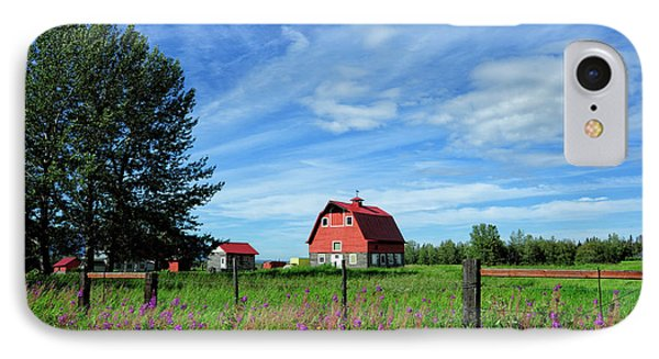 Typical Colony Home In Palmer Area IPhone Case by Sheila Haddad