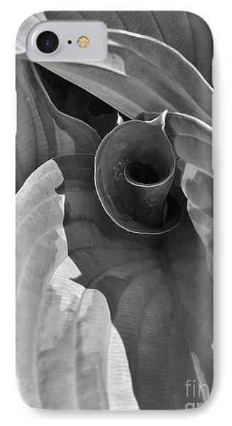 Uncoiling Hostas IPhone Case by Kathi Mirto