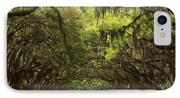 Under The Ancient Oaks IPhone Case by Adam Jewell