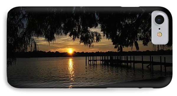 Under The Bald Cypress IPhone Case