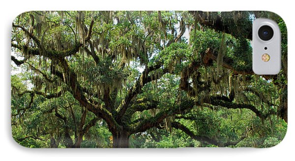 IPhone Case featuring the photograph Under The Oaks by Bob Sample