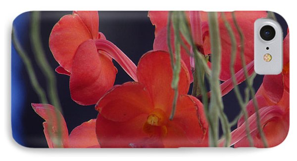 IPhone Case featuring the photograph Under The Sea by Debi Singer