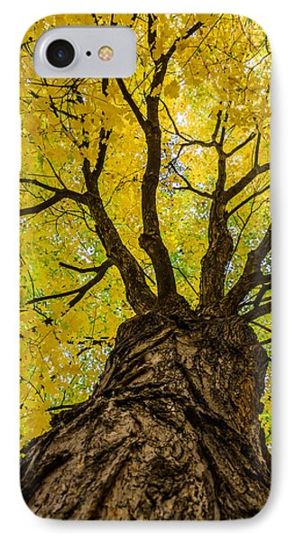 Under The Yellow Canopy IPhone Case by Debra Martz