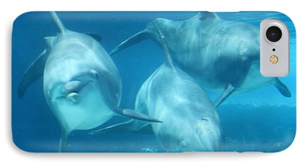 Underwater Dolphin Encounter IPhone Case by David Nicholls