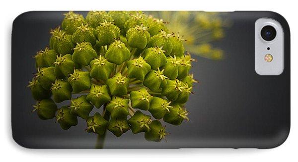 Unknown Wildflower IPhone Case by Peter Scott