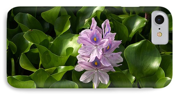 Unmanageable Beauty The Water Hyacinth Phone Case by Byron Varvarigos