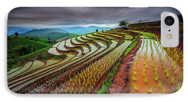 Unseen Rice Field IPhone Case