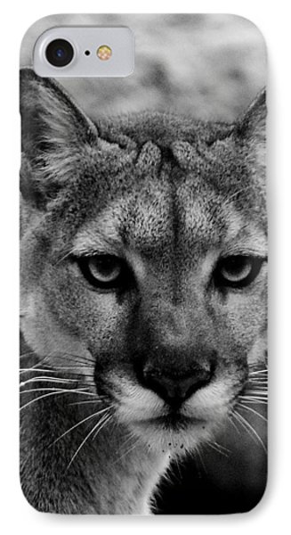 Untamed IPhone Case by Swank Photography