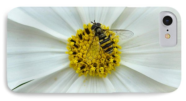 Up Close With The Bee And The Cosmo IPhone Case by Verana Stark