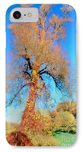 Up Rooted Tree Phone Case by Kathleen Struckle