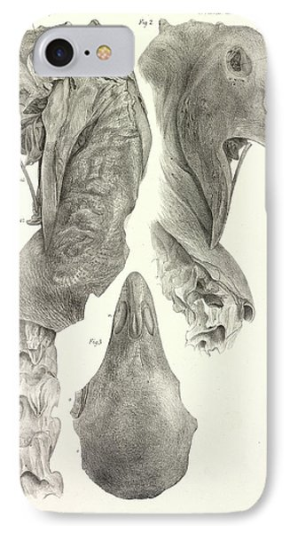 Upland Moa IPhone Case by Natural History Museum, London