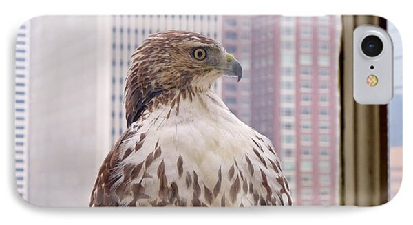 Urban Red-tailed Hawk IPhone 7 Case