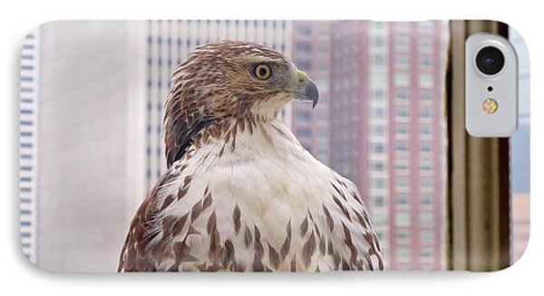 IPhone Case featuring the photograph Urban Red-tailed Hawk by Rona Black
