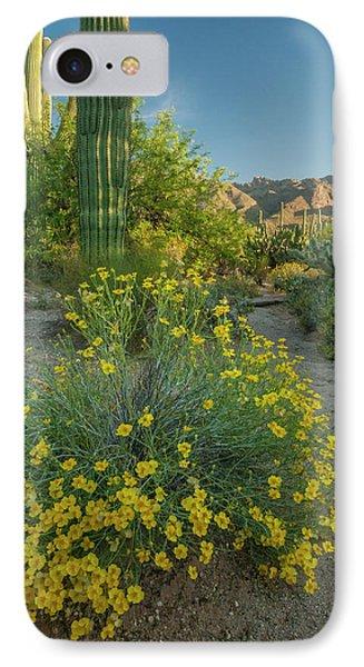 Usa, Arizona, Coronado National Forest IPhone Case by Jaynes Gallery