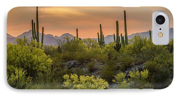 Desert Sunset iPhone 7 Case - Usa, Arizona, Saguaro National Park by Jaynes Gallery