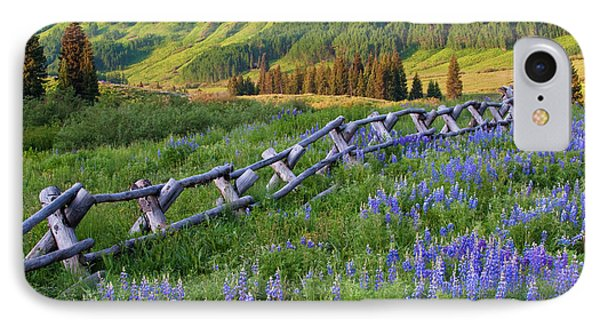 Usa, Colorado Lupines And Split Rail IPhone Case