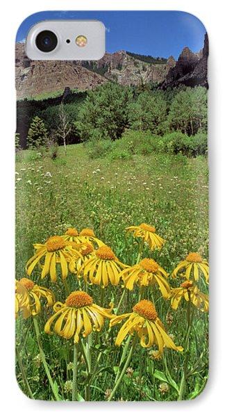 Usa, Colorado, Mill Creek Valley IPhone Case by Jaynes Gallery