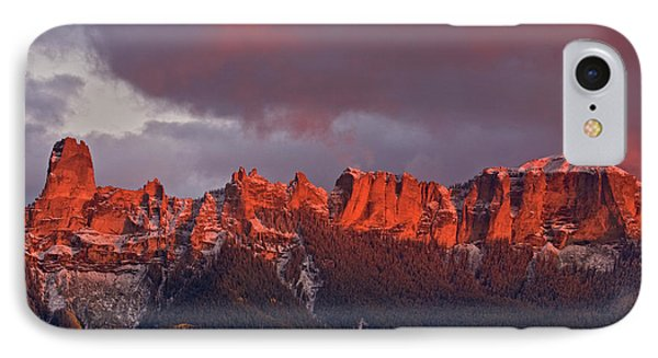 Usa, Colorado, Rocky Mountains, Owl IPhone Case by Jaynes Gallery