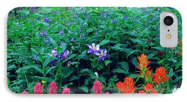 Usa, Colorado, Wildflowers In Yankee IPhone Case