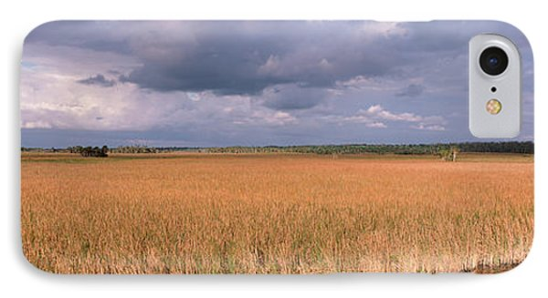 Usa, Florida, Big Cypress National IPhone Case by Panoramic Images