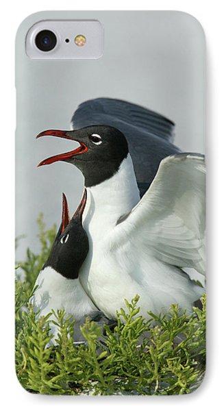 Usa, Florida, Egmont Key State Park IPhone Case