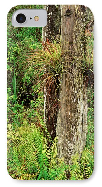 Usa, Florida, Everglades National Park IPhone Case by Adam Jones