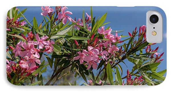 Usa, Florida, New Smyrna Beach, Oleander IPhone Case by Lisa S. Engelbrecht