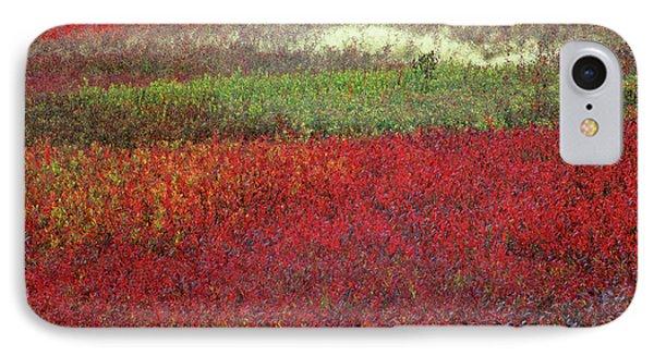 Usa, Maine Blueberry Fields In Autumn IPhone Case
