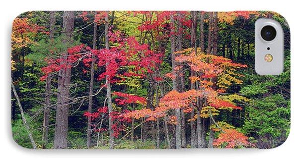 Usa, New York, Autumn In The Adirondack IPhone Case