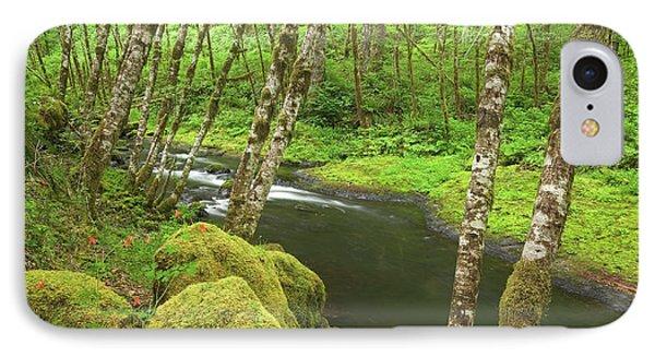 Usa, Oregon, Nestucca River IPhone Case