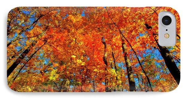 Usa, West Lafayette, Indiana, Trees IPhone Case