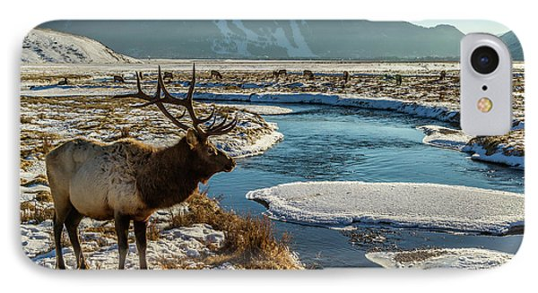 Usa, Wyoming, National Elk Refuge IPhone Case by Jaynes Gallery