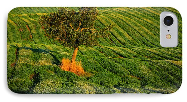Val D'orcia Tree IPhone Case by Inge Johnsson
