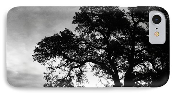 IPhone Case featuring the photograph Valley Oak by Jennifer Muller