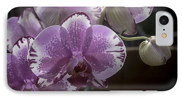 Variegated Fuscia And White Orchid IPhone Case by Lynn Palmer