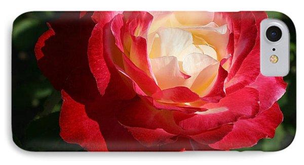 Variegated Rose IPhone Case