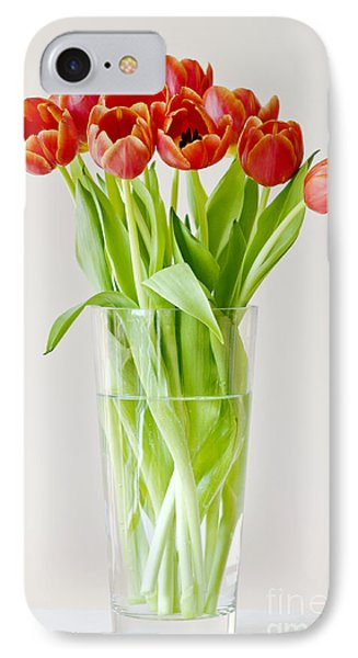 Vase Of Tulips IPhone Case by Dee Cresswell