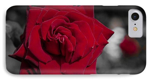 Velvet Rose 2 IPhone Case