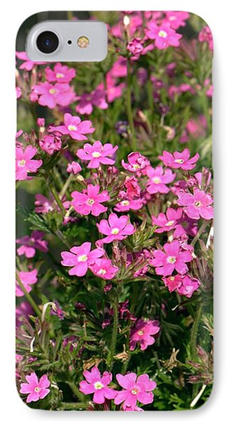 Verbena 'dark Pink Magic' IPhone Case