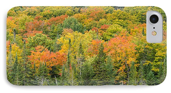 Vermont Autumn Fall Panorama Forest Foliage IPhone Case