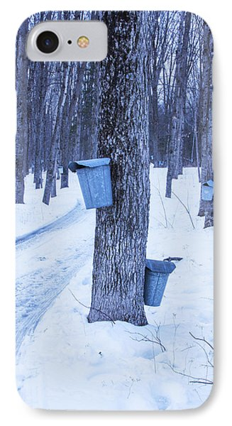 Vermont Maple Syrup Buckets IPhone Case