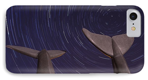 Vermont Night Landscape Star Trails Whale Tails Phone Case by Andy Gimino