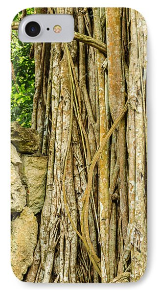 Vertical Vines IPhone Case by Jess Kraft