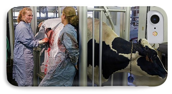 Veterinarians Operating On A Cow IPhone Case