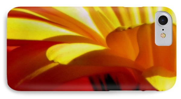 Vibrance  Phone Case by Karen Wiles