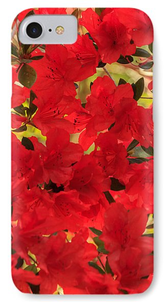 IPhone Case featuring the photograph Vibrant Azalea by Patricia Schaefer