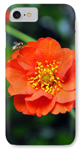 IPhone Case featuring the photograph Vibrant Pop Of Orange by Kelly Nowak