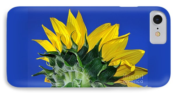 Vibrant Sunflower In The Sky Phone Case by Kaye Menner