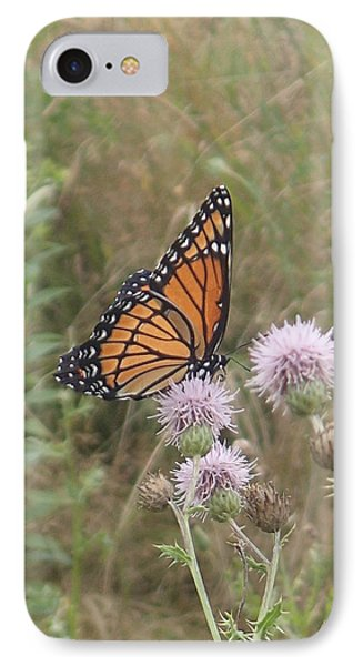 Viceroy On Thistle IPhone Case by Robert Nickologianis